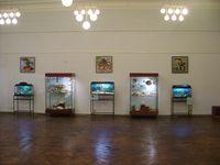 Выставка Планета чудес в Рыбинском музее