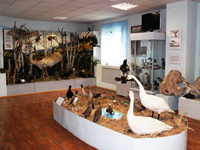Зал природного комплекса