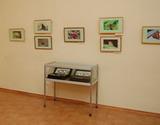 Выставка «Бабочки пушкинского детства» в Палатах г.Владимира