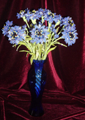Цветов чарующая сила Н.Коваленко в Кемеровском краеведческом музее