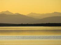 Фотовыставка А.Каменева Желтый цвет в природе