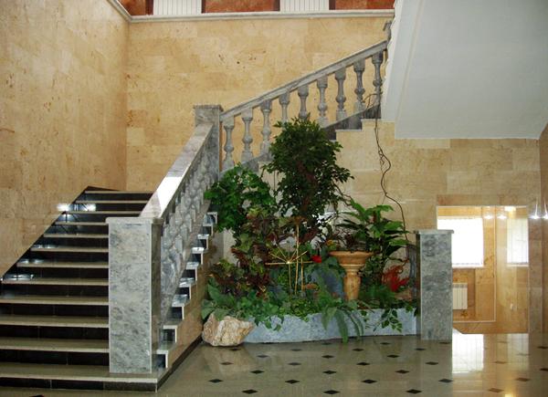 Экспозиции: Лестница на второй этаж