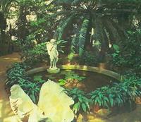 В тропической оранжерее. Ботанический сад, Петербург