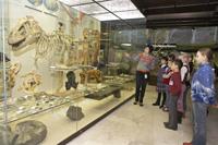 Экскурсии выходного дня в Дарвиновском музее