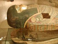 Экспозиции: саркофаг