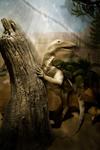 Июнь-2013 в Государственном Дарвиновском музее