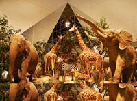 Сентябрь в Государственном Дарвиновском музее