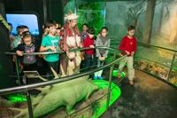 Ноябрь-декабрь 2014 в Государственном Дарвиновском музее