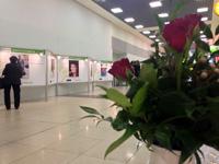 «Красота зрелого возраста» в аэропорту Шереметьево