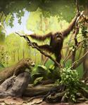 Декабрь в Дарвиновском музее