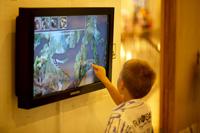 Осенние каникулы в Дарвиновском музее