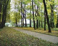 Экспозиции: Аллея к дому Л.Н.Толстого