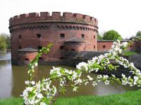 Калининградский областной музей янтаря. Bид с Верхнего пруда