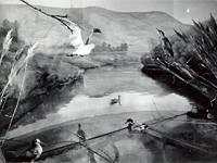Экспозиция. Диарама Водоем, надводная часть
