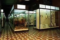 Экспозиции: Верхний экспозиционный зал