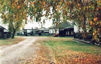 Осень в музее