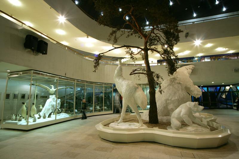 Экспозиции: Многообразие жизни на Земле