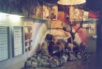Фрагмент экспозиции Животный мир юга Кузбасса.