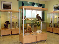 Зоологическая выставка