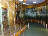 Зал природы