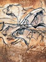 Панель львов в пещере Шове (Франция)