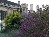 Дом Ч. Дарвина в Дауне.