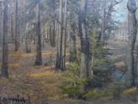Петр Петровичев. Весна в лесу.