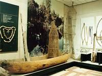 Фрагмент выставки Охота и рыболовство