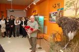 Выставка «Кунсткамера» из фондов Владимиро-Суздальского музея-заповедника