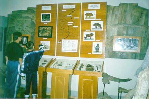 Экспозиции: Фрагмент выставки Территория Нижнеудинского района в древности