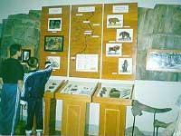 Фрагмент выставки Территория Нижнеудинского района в древности