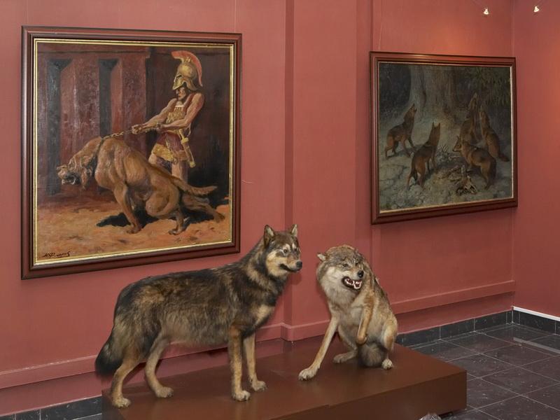 Экспозиции: «Волк становится собакой».