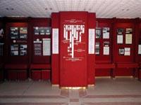 Фрагмент правого крыла музейной экспозиции (древо истории университета)