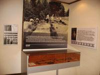 Реконструкция погребения №88 Солдырского III могильника