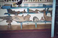Фрагмент археологической экспозиции