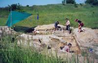 Раскопки верхепалеолитической стоянки Быки-7