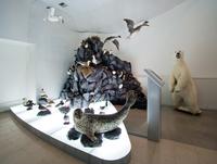 Комплекс постоянной экспозиции Обитатели морских побережий Чукотки