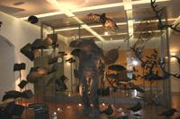Музеи Глазго - взгяд   специалистов и посетителей