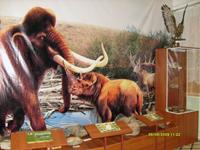 Природа и археология родного края