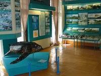 Сахалинский музей