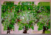 3-я Всероссийская генеалогическая выставка в Курском краеведческом музее