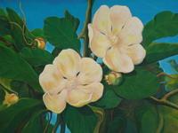 «Новый Свет кубинской живописи»