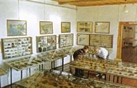 Фрагмент экспозиции Коллекция минералов и горных пород