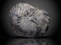 камни Ики в Дарвиновском музее