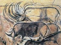 Изображение носорогов в пещере (Шове) Франция