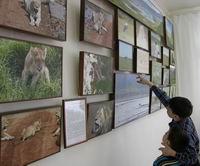 Дикая природа Африки в КВЦ Радуга (г. Чебоксары)