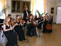 Концерт в музее