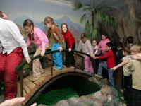 Мостик через пруд черепахи Тортиллы
