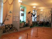 Фрагмент экспозиции Флора и фауна Кольского полуострова