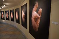 Выставка Михаила Заикина Россия